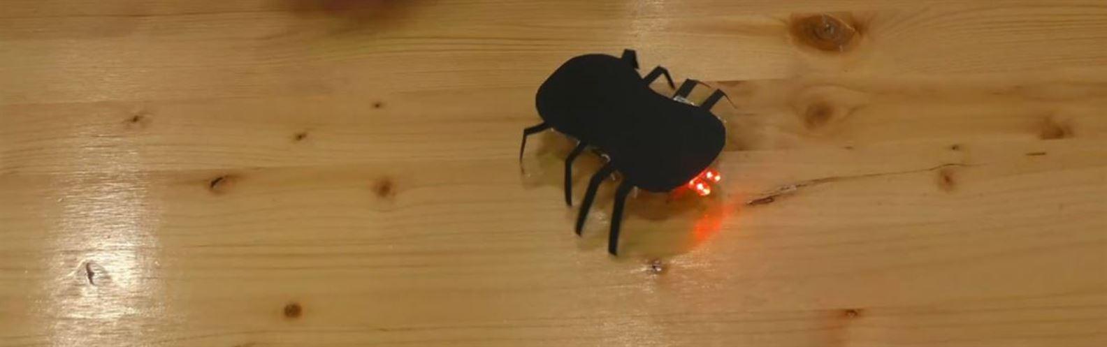 Actividad para niños de DIY: Araña